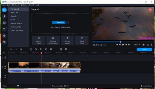 remove video watermark add