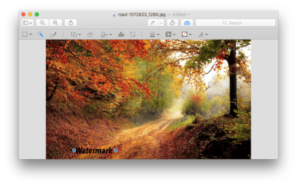add watermark to photo preview02