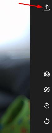 polarr raw image converter