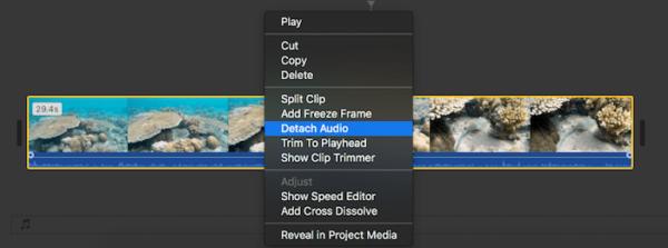remove audio imovie03