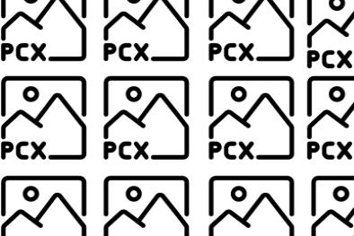 pcx to jpg image 21
