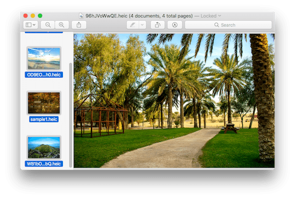 webp to jpg preview 1