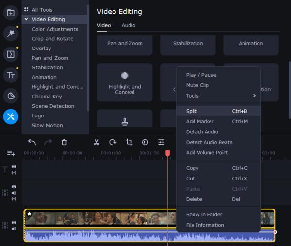 blur face in video movavi 6